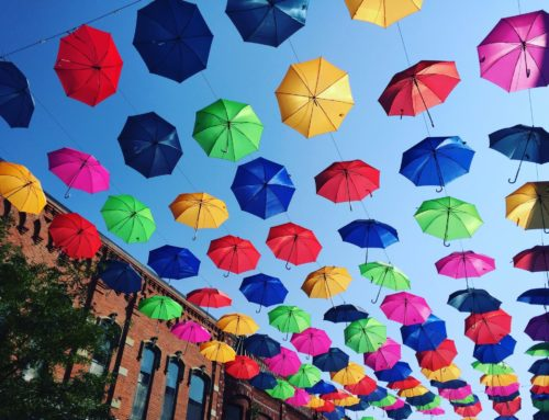Return of the Umbrellas,  Irish fest & Animine Afternoons!